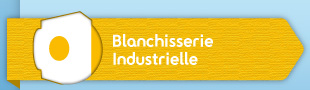 Blanchisserie Industrielle